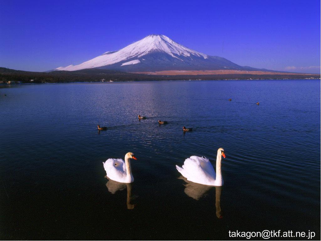 NAVER まとめ【壁紙】 富士山の壁紙 【絶景世界遺産】